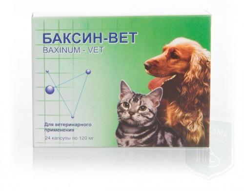 Баксин, 24 капсулы по 120 мг