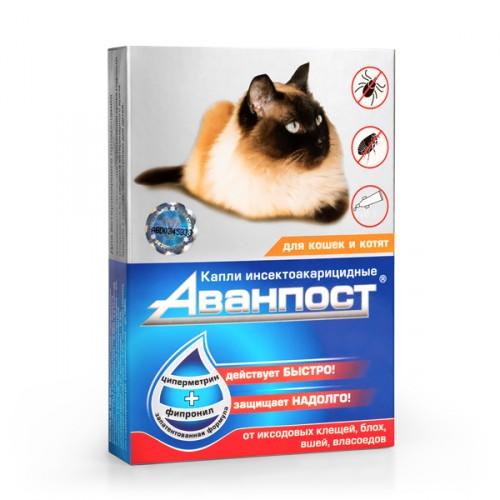 АВАНПОСТ капли на холку для кошек и котят