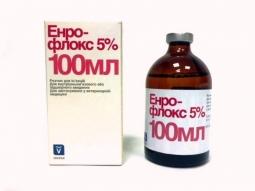 Энрофлокс 5%, 100 мл ИНВЕСА
