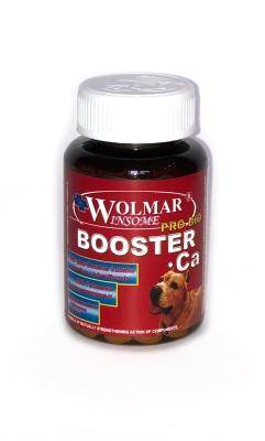 Wolmar Winsome Pro Bio BOOSTER Ca 540 таб