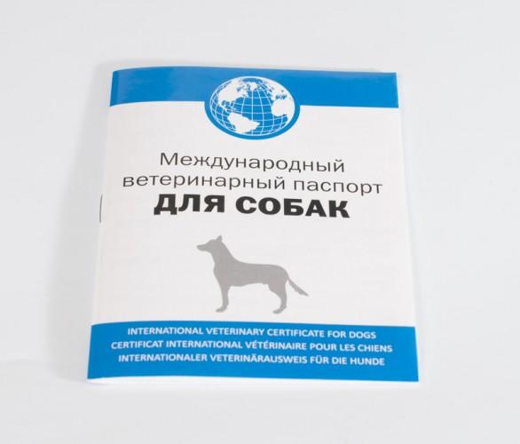 Ветпаспорт (Фирм) для собак