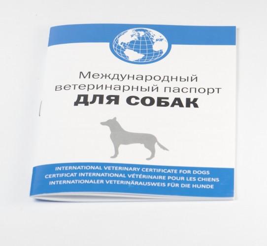 Международный ветпаспорт для собак